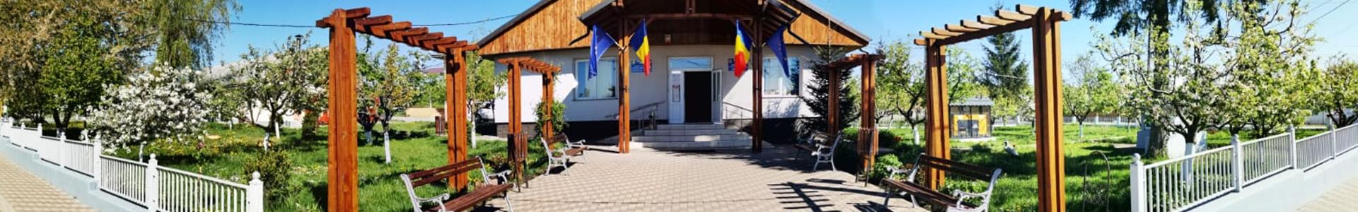Primaria Comunei Ruginoasa